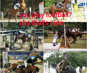 horse riding and dangerous sport image