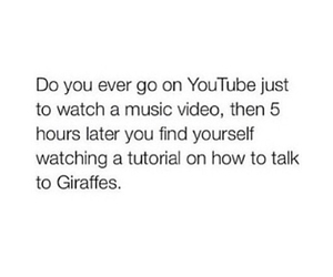 funny, true, and youtube image