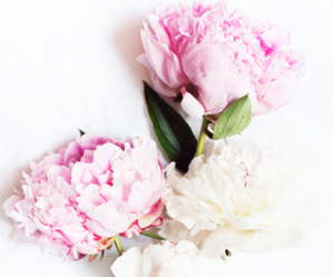fashion, flower, and flowers image