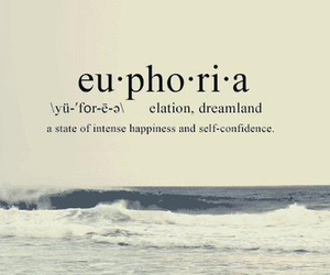 confidence, happiness, and euphoria image
