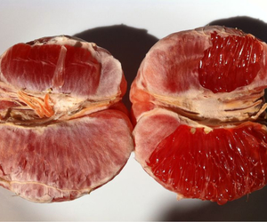 fruit, red, and grapefruit image