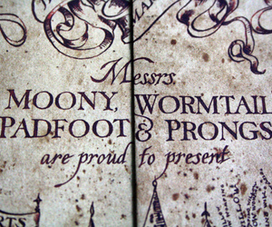harry potter, padfoot, and prongs image