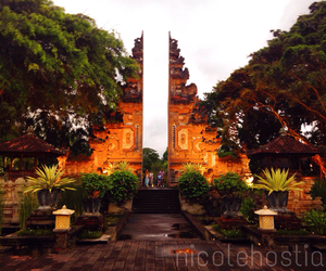 bali, green, and indonesia image