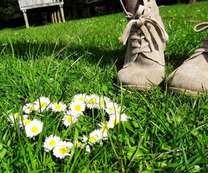 boots, daisy, and inspire image