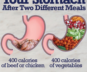 calories, FRUiTS, and vegetables image