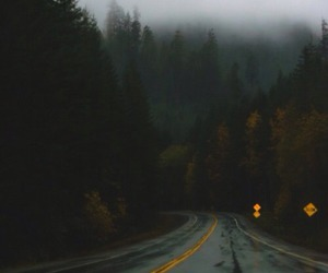 road, forest, and grunge image