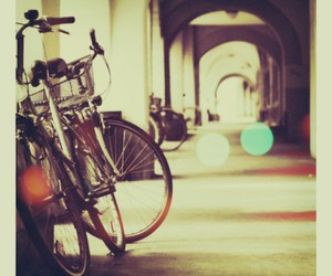 cute and bicycle. image