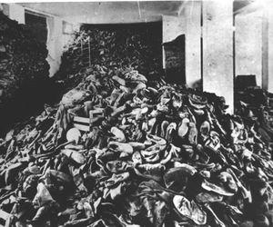 auschwitz, jews, and shoah image