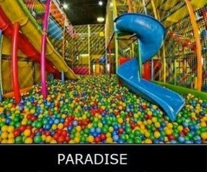 paradise, funny, and fun image
