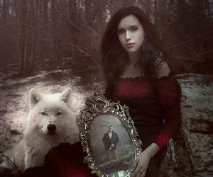 fantasy, forest, and mirror image