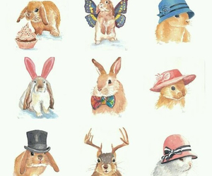 rabbit, bunny, and butterfly image