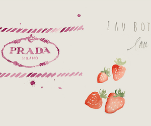 france, illustrations, and Prada image