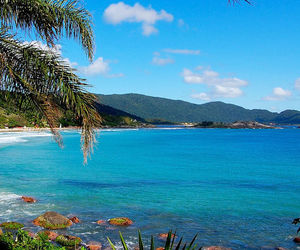 beach, brasil, and summer image