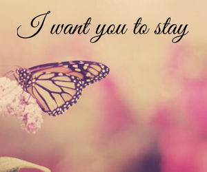 butterfly, Lyrics, and quotes image