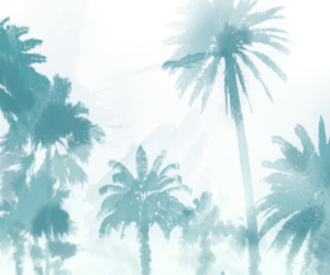 background, wallpaper, and palm trees image