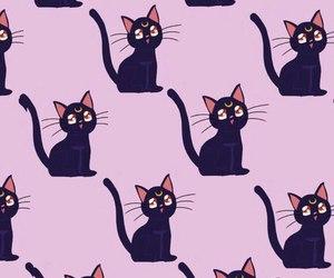 cat, wallpaper, and sailor moon image