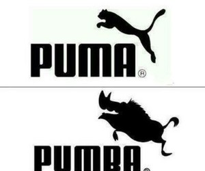 animals, pumba, and funny image