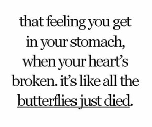 broken, butterfly, and quotes image