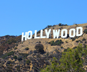 hollywood, pink, and pastel image