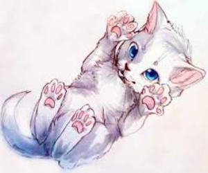 kitty, cute, and blue image