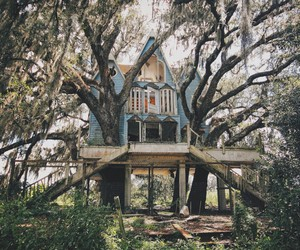 house, tree, and treehouse image