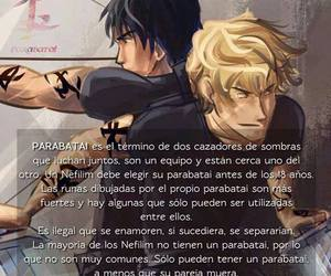 jace, alec, and shadow hunters image