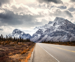 Alberta, Banff National Park, and snow image