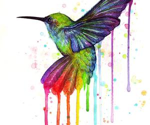 bird, art, and rainbow image