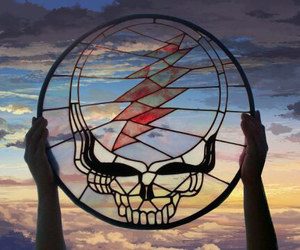 grateful dead, dead head, and steal your face image