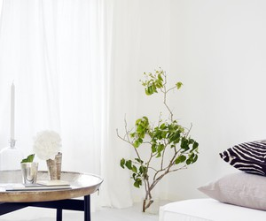 interior design, living room, and Scandinavian image