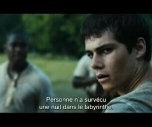 thomas, the maze runner, and love image