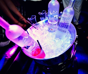 alcohol, club, and drinks image