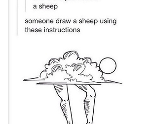 funny and sheep image