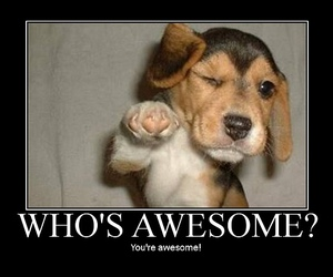 awesome, dog, and puppy image