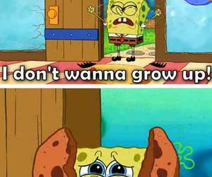 Cookies, spongebob, and funny image