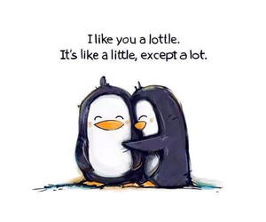 love, cute, and penguin image