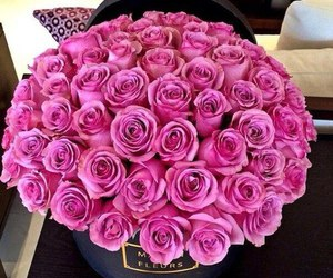amazing, pink, and beautiful image