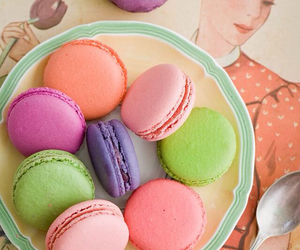 colorful, girly, and macaroons image