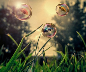 bubble, césped, and green image