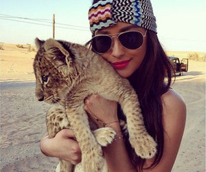 shay mitchell, animal, and lion image