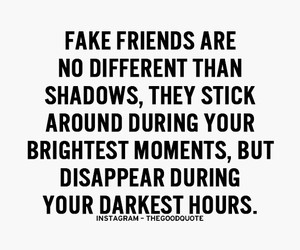 shadows and friends image