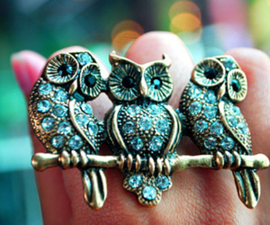 fashion, ring, and lovely image