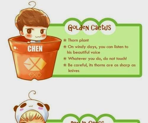 Chen, tao, and exo image