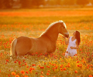 girl, moment, and horse and girl image