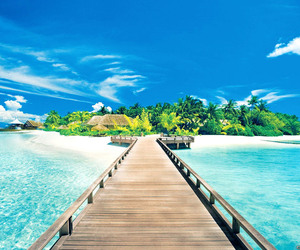 summer, beach, and paradise image