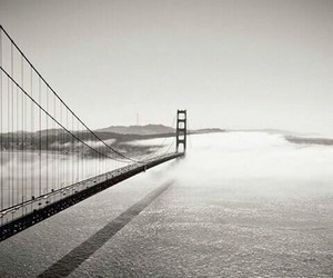 black and white, bridge, and usa image
