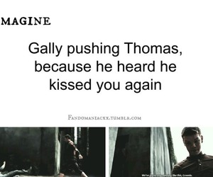 gally, imagines, and the maze runner image