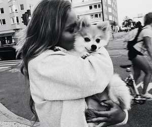 dog, girl, and black and white image