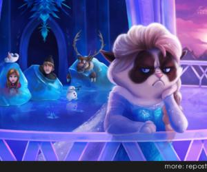 frozen, disney, and grumpy cat image
