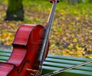 cello, music, and photograph image
